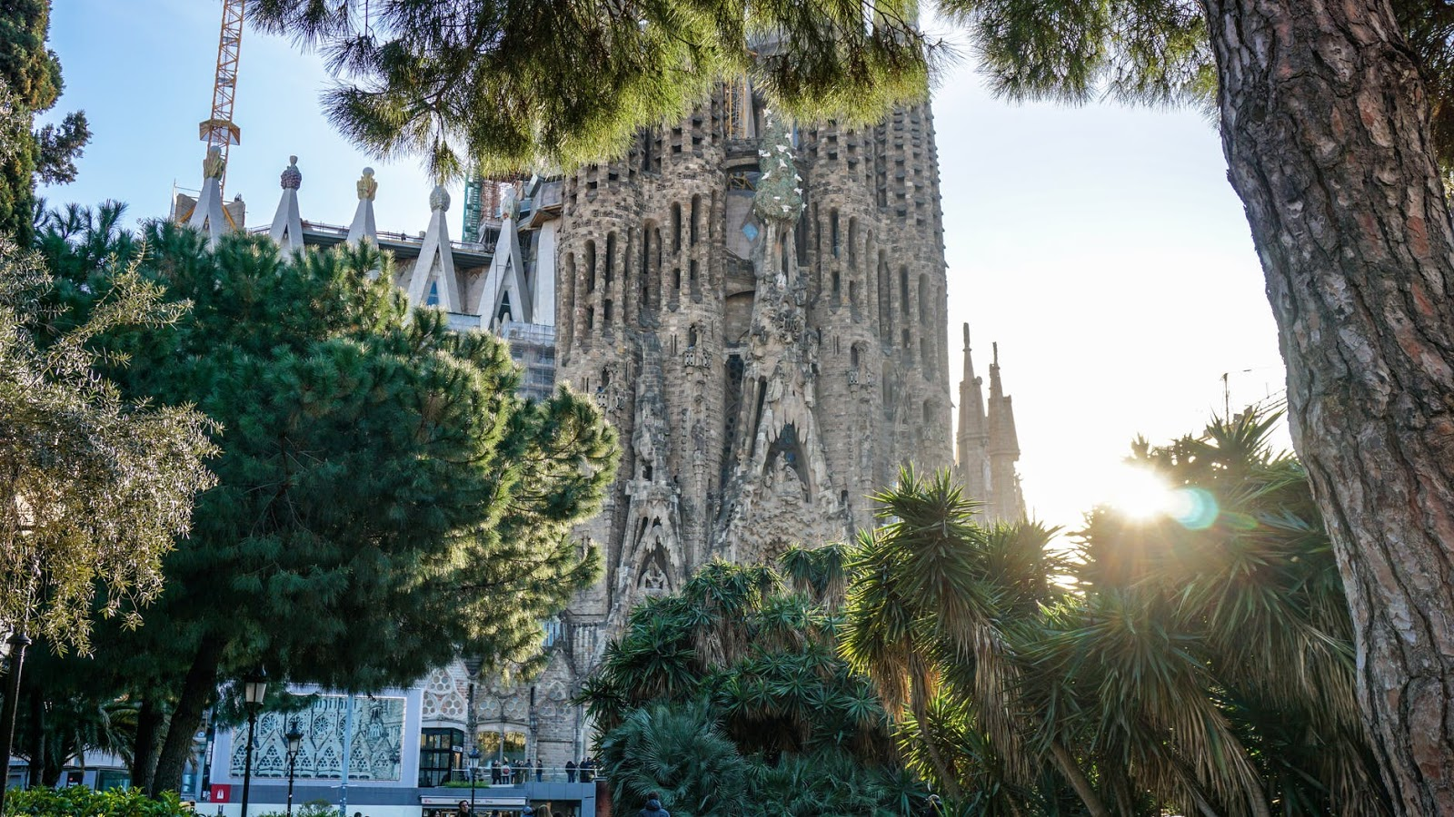6 Top Attractions in Barcelona Not To Be Missed
